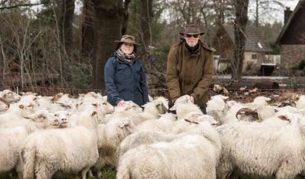 De zoektocht naar de perfecte graasplek voor de 260 schapen gaat nog even door.