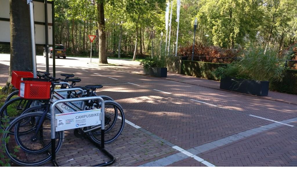 Er rijden te weinig bussen tussen station Bilthoven en Berg en Bosch, maar fietsen zijn wel beschikbaar.   © De Vierklank