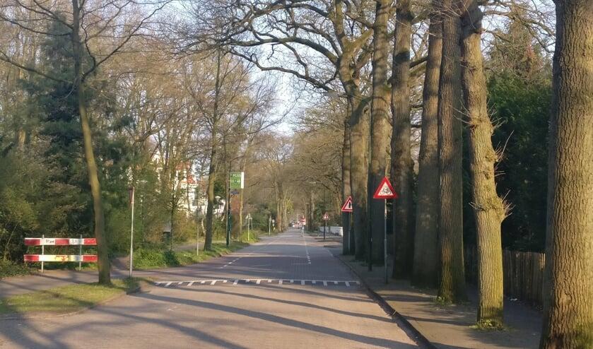 Fietsers moeten nu tweemaal de Jansteenlaan oversteken. [foto Henk van de Bunt]