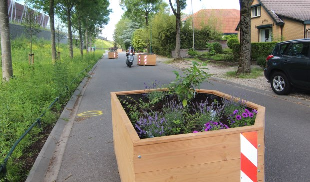 Vier grote, goed zichtbare, houten bloembakken worden door aanwonenden voorzien van groen en onderhouden (foto 21 juni).   © De Vierklank