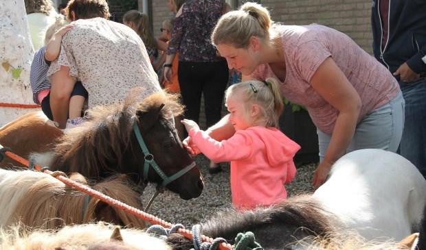 • Pony's en paarden zijn onlosmakelijk verbonden met de jaarlijkse markt in Alblasserdam.