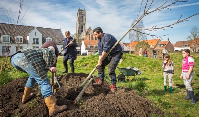 • Dit voorjaar werd de Torentuin grotendeels ontmanteld. Na de woningbouw komt een kleinere variant terug.