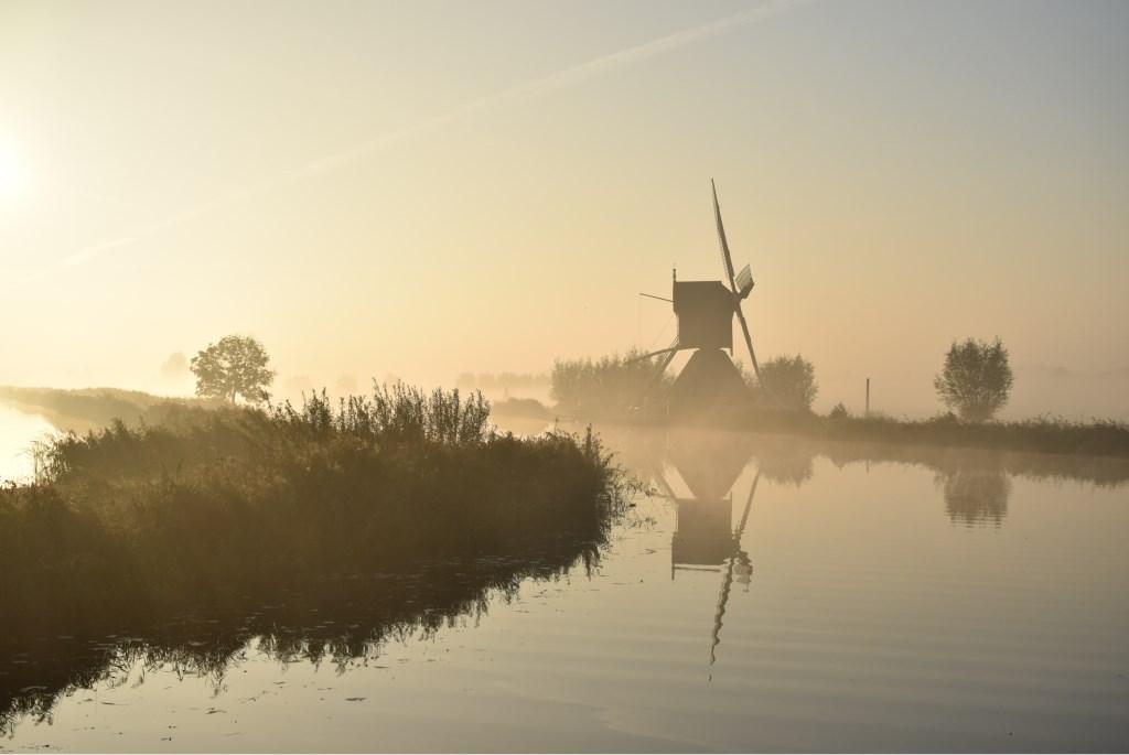 Foto: Liesette Lorier-Oudijn  © Alblasserwaard