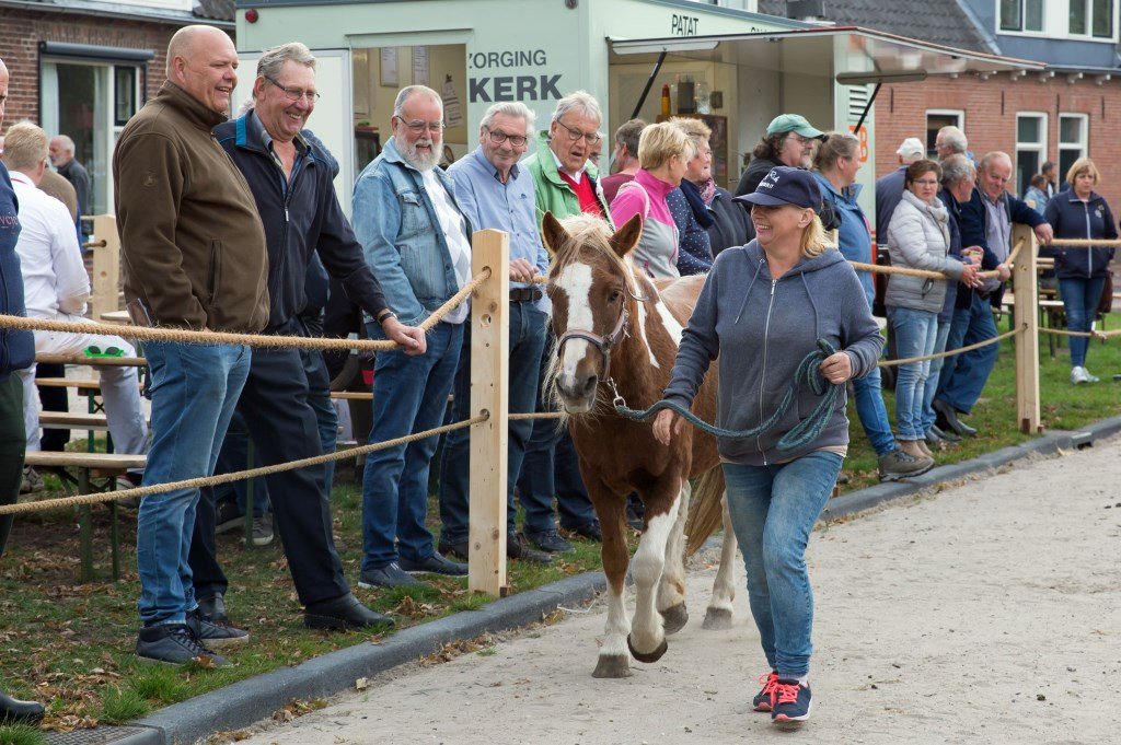 Keuring tijdens de Paardenmarkt van Ameide. Foto: Marijke Verhoef © Alblasserwaard