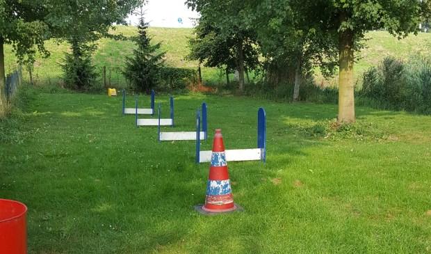 • Het Flyball parcours bij de VVHP.