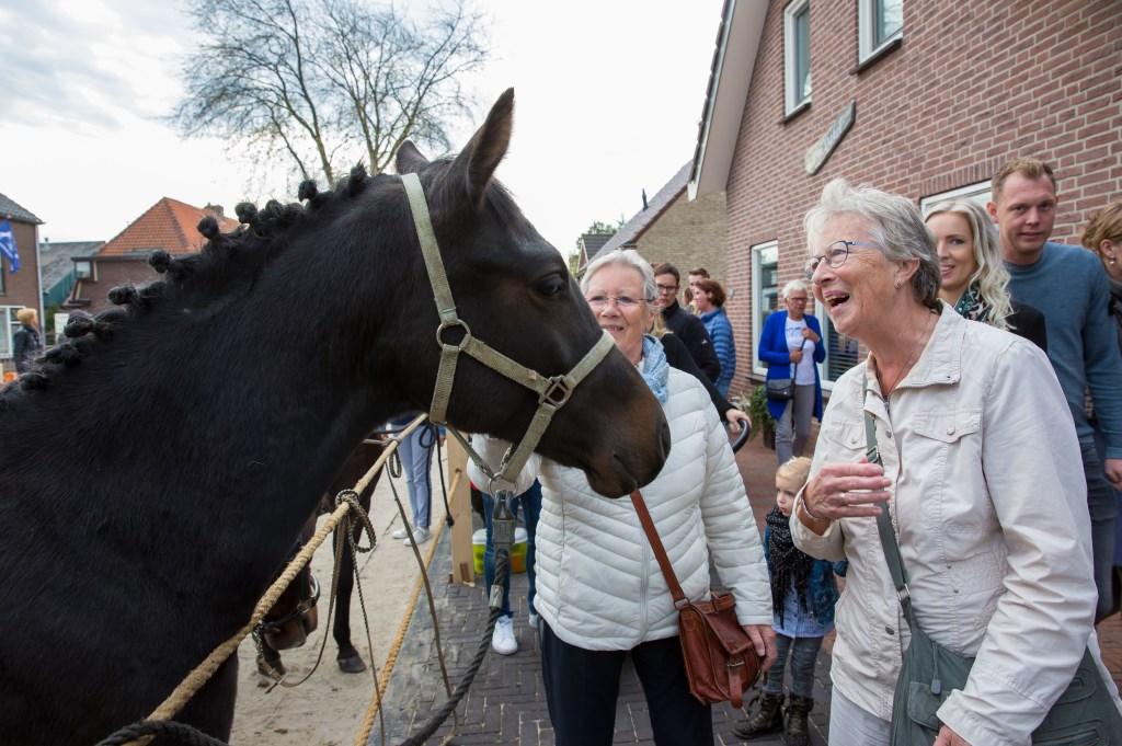 Aangenaam kennis te maken! Foto: Marijke Verhoef © Alblasserwaard