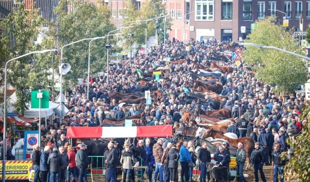 Hedelse Paardenmarkt Foto: Lya Cattel © Bommelerwaard