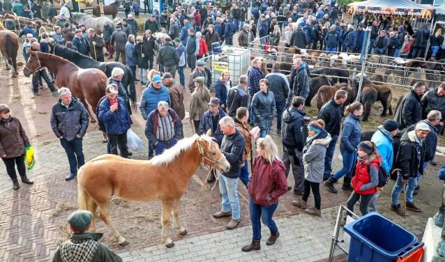 Hedelse Paardenmarkt