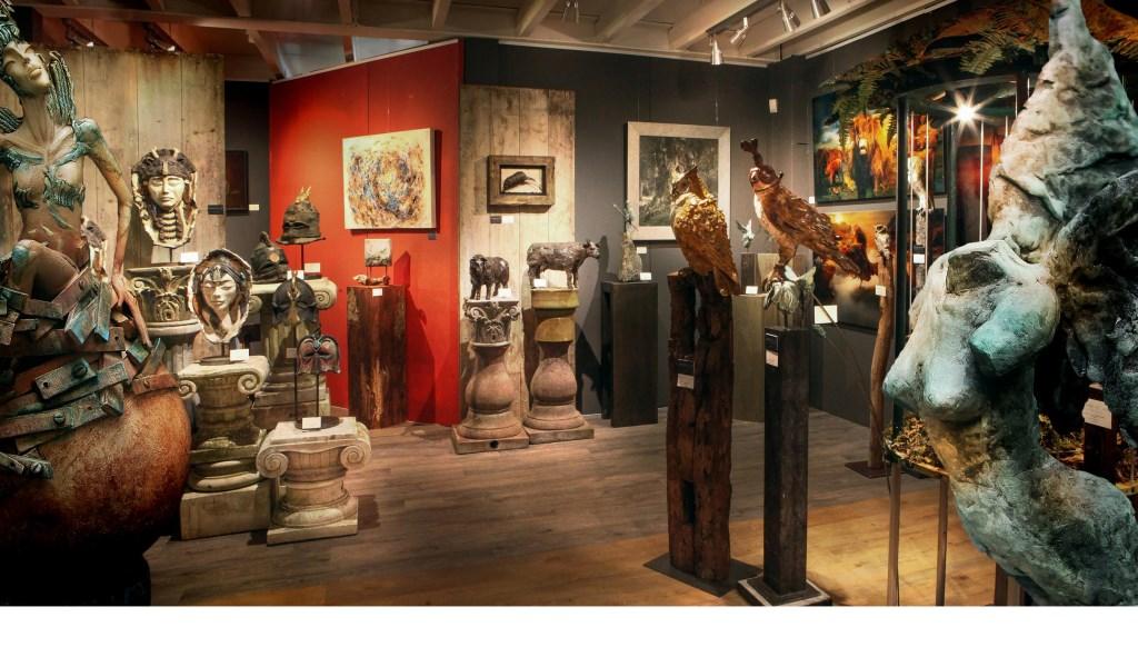 • Diversiteit in kunst bij Galerie Friends of Art.  © Alblasserwaard