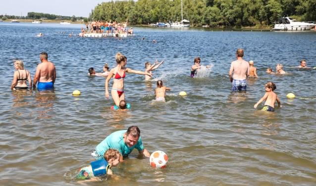 • Vorige week kon er nog wel gezwommen worden in De Neswaarden in Aalst. Vandaag waarschuwt de provincie voor blauwalg.
