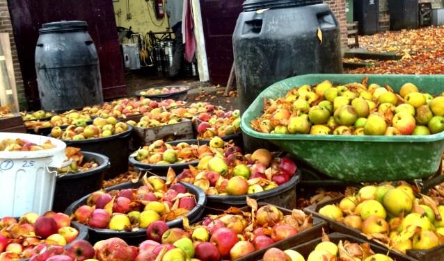 • De stokerij gebruikt het beste fruit uit de Betuwe.