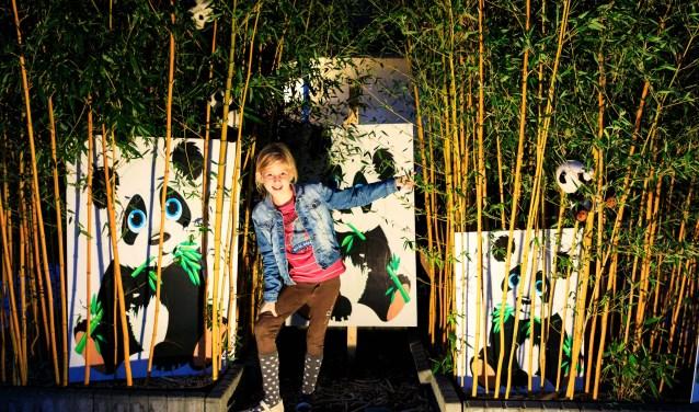 Verlichtingsdagen Aalst Foto: Lya Cattel © Bommelerwaard