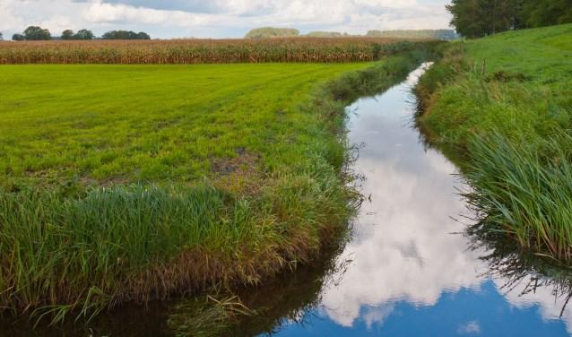 • In het verleden zijn te veel sloten gedempt, waardoor nu wateroverlast ontstaat.