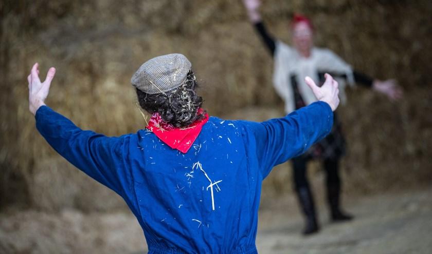 MISPELGAT - De Boerenbruiloft voor 2019 gaat tussen XXX en XXX. FOTO LEVIN DEN BOER - LDBFOTO.NL