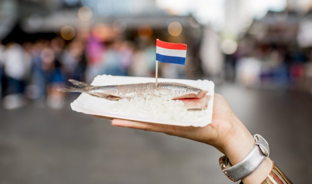 Holding herring with onions traditional dutch snack