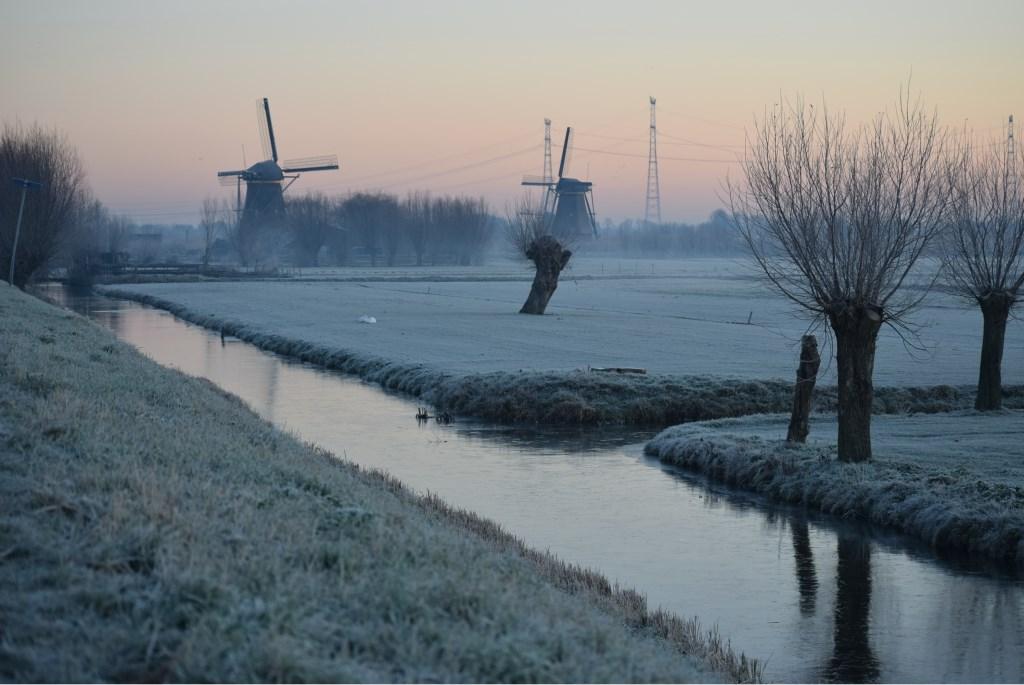 Foto: Liesette Lorier-Oudijn  © Klaroen