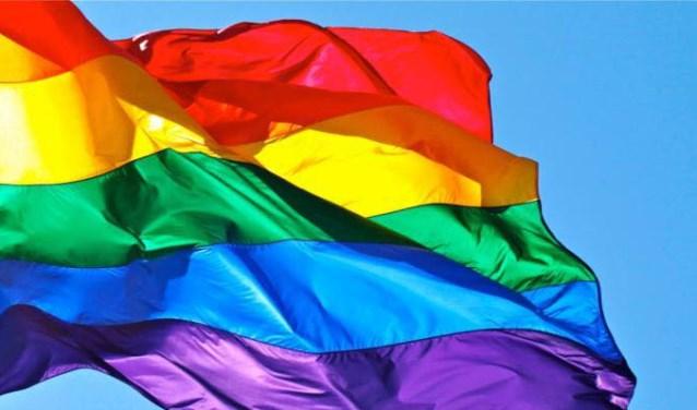 • Vijfheerenlanden gaat vlaggen tegen Nashville-verklaring.