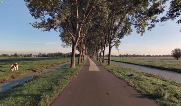• De Vlietweg in Bleskensgraaf, waar 36 bomen worden vervangen.