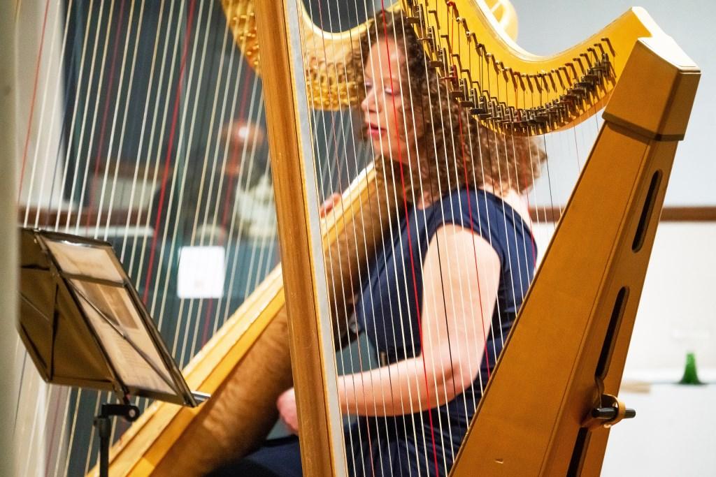 Concert Harpiste Carla Bos • Sagen vd Rijn  © Vianen