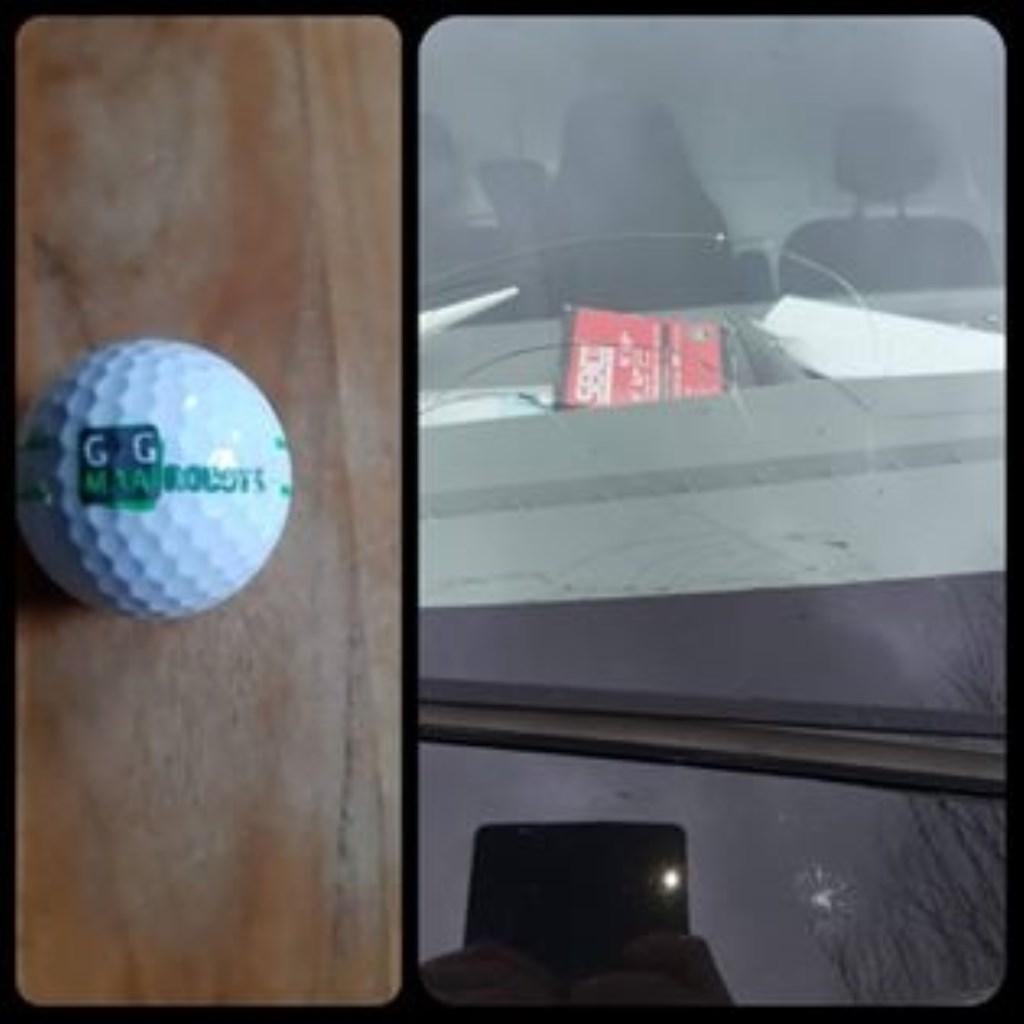 • Een van de gevonden golfballen, in een bestelbus op de Zouwendijk. Foto: Joyce Brouwer/Facebook © Alblasserwaard