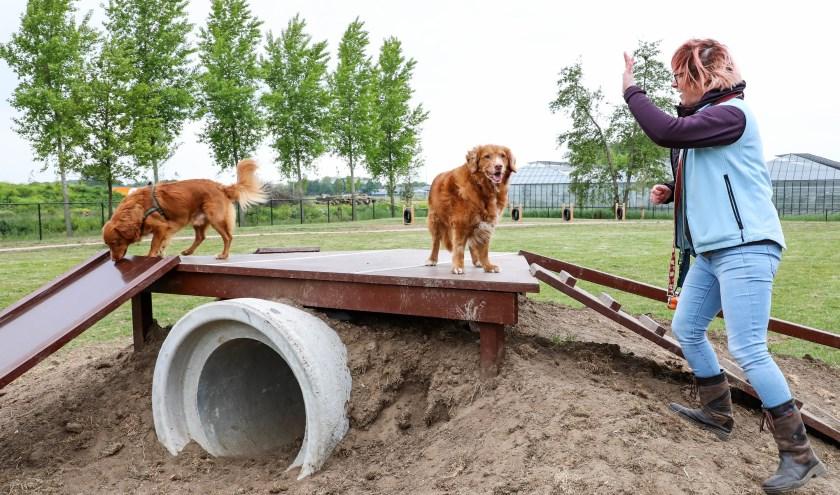 • Honden kunnen zich op een groot speciaal hondenveld goed uitleven op de speeltoestellen.