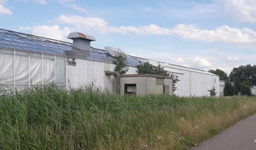 Het leegstaande kassencomplex van chrysantenkwekerij De Ruigenhoek in Woudrichem.