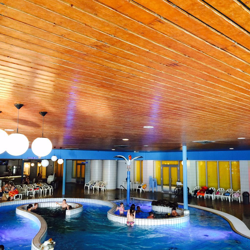 Bruine Lattenplafonds Vervangen In Zwembad De Lansingh Krimpenerwaard