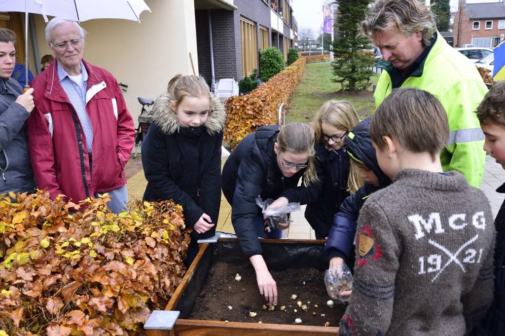 De kinderen voorzien de bakken van zaadjes en bollen  Foto: Wil Feijen © DeMooiSonenBreugelKrant