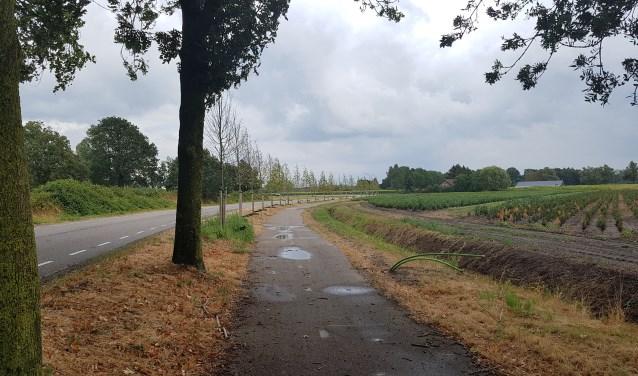 Lieshoutseweg Son en Breugel  | Fotonummer: ea0ce9