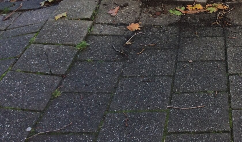<p>&nbsp;De SOC wil per wijk, dus ook in Leidschenveen en Ypenburg, de meest gevaarlijke punten in kaart brengen met als doel het aantal buitenhuis-ongevallen te laten dalen. Foto: Peter Zoetmulder</p>