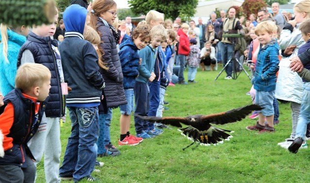 Er was een roofvogelshow waarbij een roofvogel onder meer tussen een smalle haag van jongens en meisjes door vloog; de kinderen vonden het prachtig (foto: Ap de Heus).