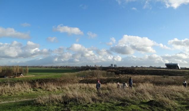 Laat in 2018 natuurbescherming leidend zijn, ook hier in het Buytenpark. Tekst en foto: Rob Wiewel