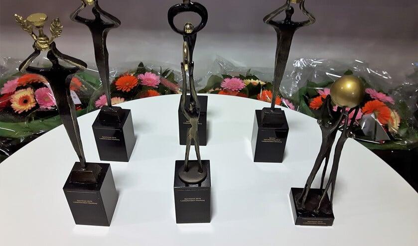 Er zijn sportprijzen in diverse categorieën (archieffoto).