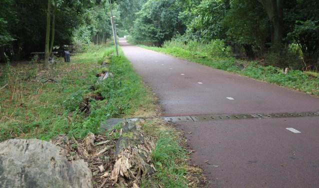 Het Molenpad is een fiets/wandelpad tussen de Nieuwkoopseweg en Pijnacker Noord.