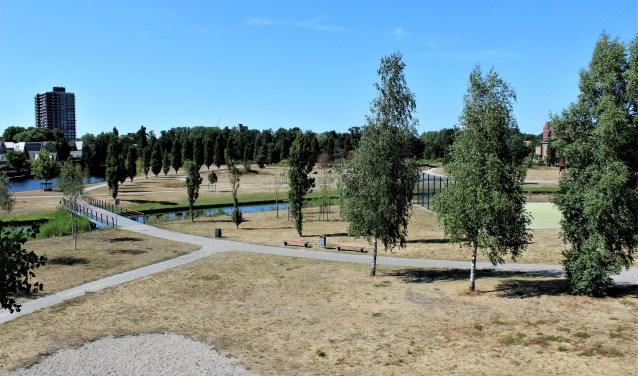 Ook het Sijtwendepark in Voorburg begint al aardig wat tekenen te vertonen van verdroging (foto: Dick Janssen).
