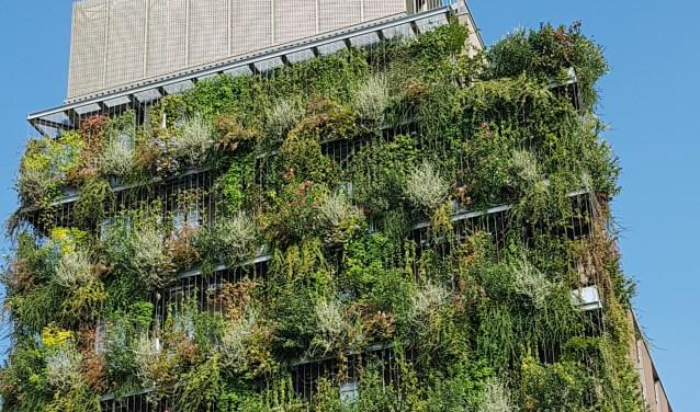 In Milaan worden veel gevels ingepakt is er zelfs een 'verticaal bos' met bomen op balkons. Zou SnowWorld ook niet zo kunnen worden ingepakt?  Foto: Leon van den Berg