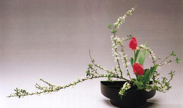 Ikebana is tegenwoordig vooral een uiting van liefde voor harmonie en de schoonheid van de natuur. Foto: pr