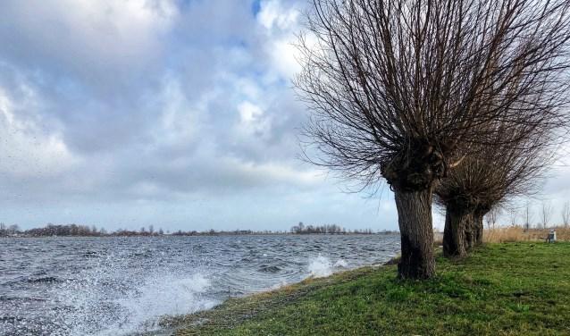 Onstuimig weer bij de Zoetermeerse plas op 8 januari. Foto: Jolanda Bakker