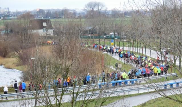 Fraai zicht op de vele deelnemers aan de Noord-Aa Polderloop. Foto: Gerda van Haaster