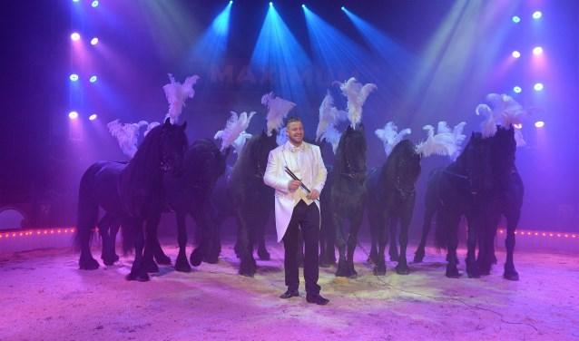 Marlon Zinnecker met zijn imposante Friezen.