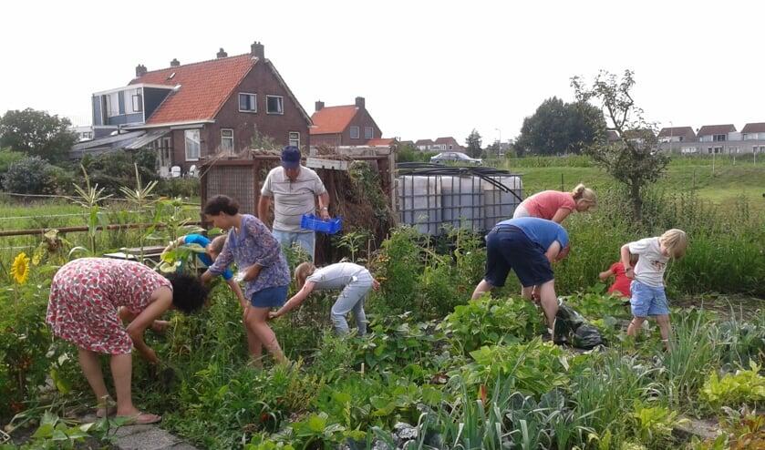 Tuinieren is altijd weer een feest.