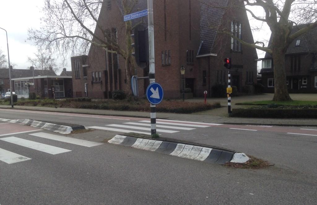 Van dichtbij: de in de weg liggende opgehoogde middenberm op de Karel Doormanlaan. Foto: Peter Zoetmulder  © Postiljon