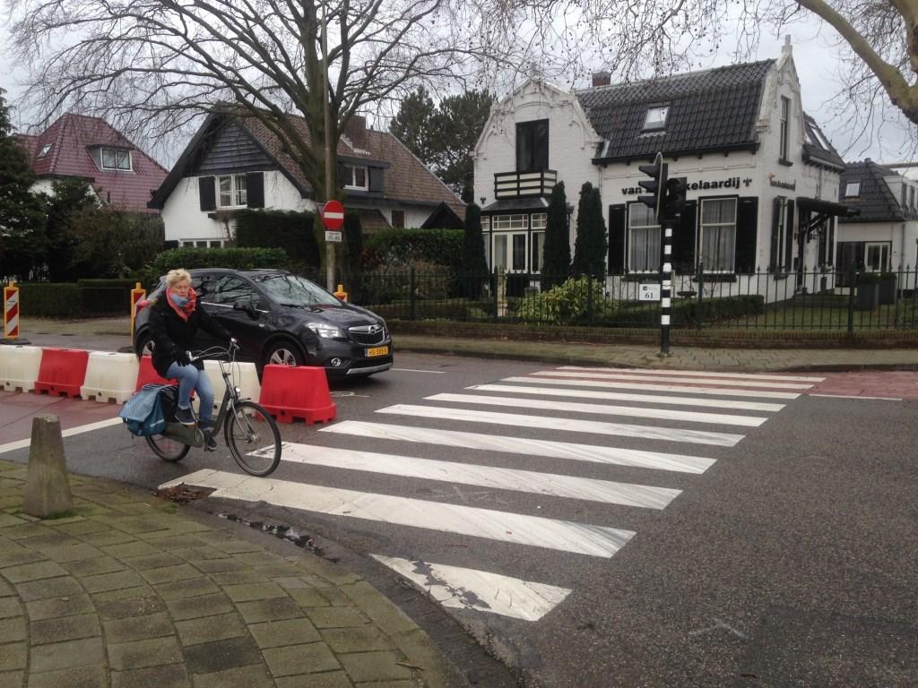 Fietser richting Karel Doormanlaan.  © Postiljon