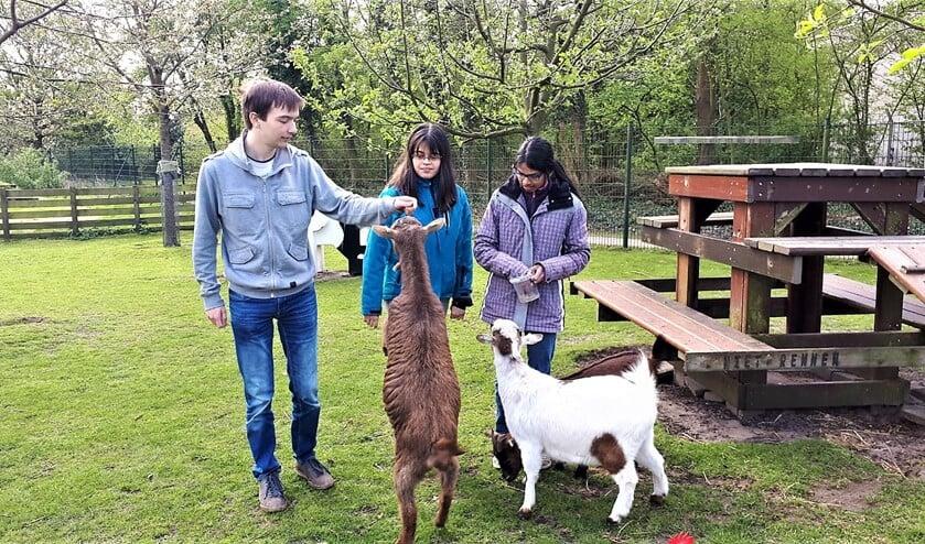 Jorian, Lian en Rajitha zijn drie jonge enthousiaste vrijwilligers van de Stadstuin Rusthout in Leidschendam (foto: Vrijwilligerspunt).