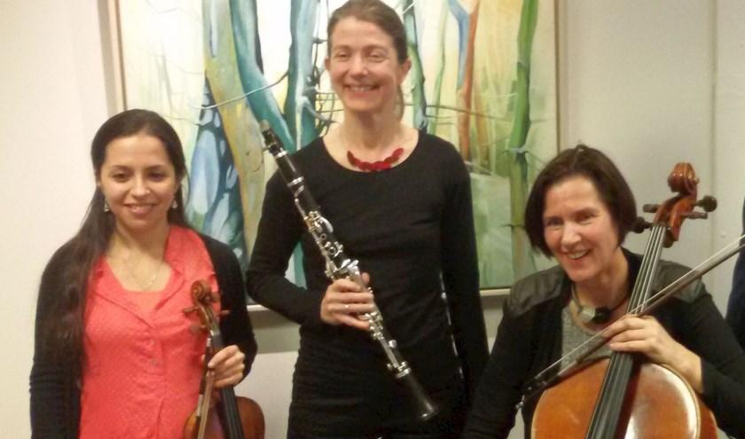 Op zondag 19 mei kunnen liefhebbers van klassieke muziek nog naar een huiskamerconcert van het Ebony Ensemble XS. Foto: pr