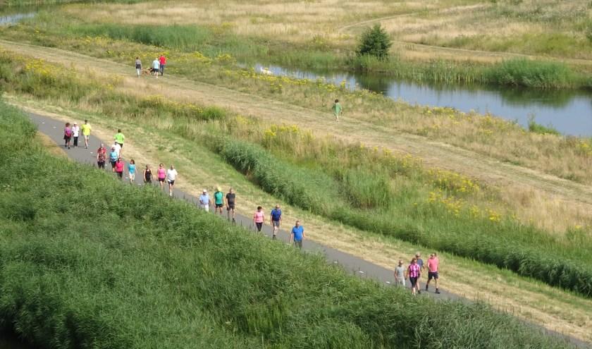Er zijn twee schitterende wandelroutes uitgezet, een familieroute van 12 kilometer en een recreatieve route van 25 kilometer. Foto: Carla Teunissen