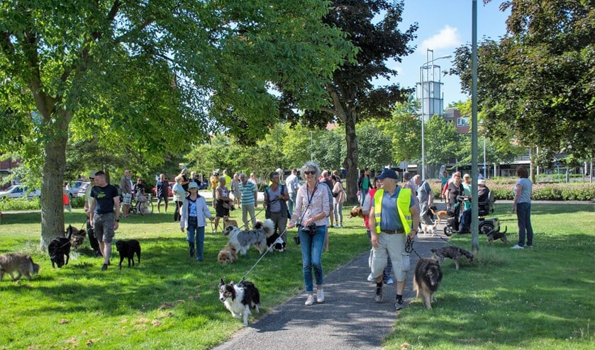 Op de demonstratie tegen de verhoging van de hondenbelasting kwam een vijftigtal hondenbezitters met hun dieren af (foto: Sebastiaan Barel).