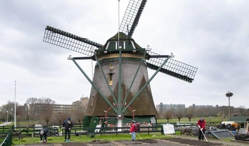 Molen De Vlieger (archieffoto: Michel Groen).