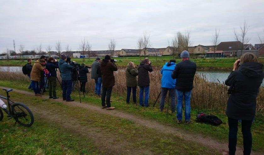 Zondag waren er veel fotografen in de Groenzoom. (foto: Eugene van der Lans)