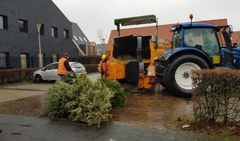 <p>Wordt De Bras op Ypenburg de schoonste wijk van Nederland? Foto: Walter van Krieken<br><br></p>